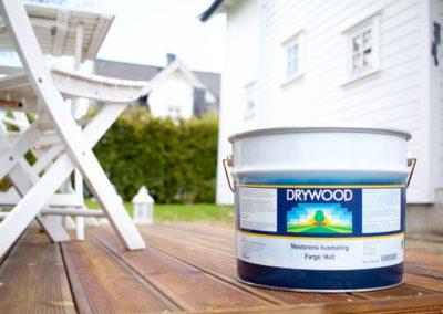 drywood span web 1