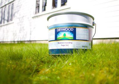 drywood span web 3